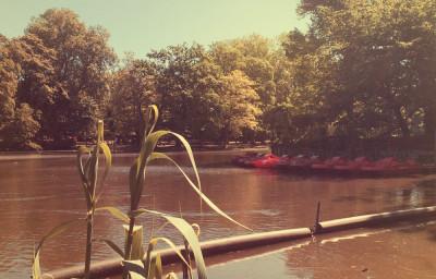 Tretboot im Volksgarten
